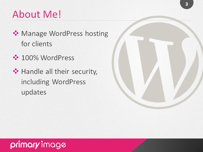 WordPress Security Slide3