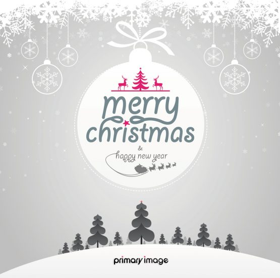 Merry-Christmas-card-front