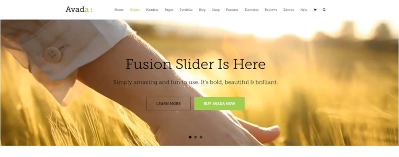 Fusion Slider
