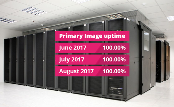 Primary Image web hosting uptime hat-trick